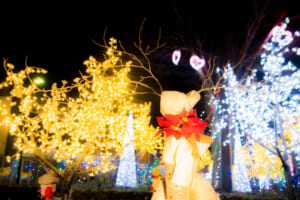 ホワイトクリスマスin軽井沢
