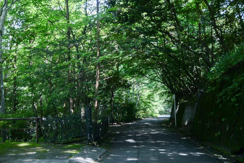 旧軽井沢 離山
