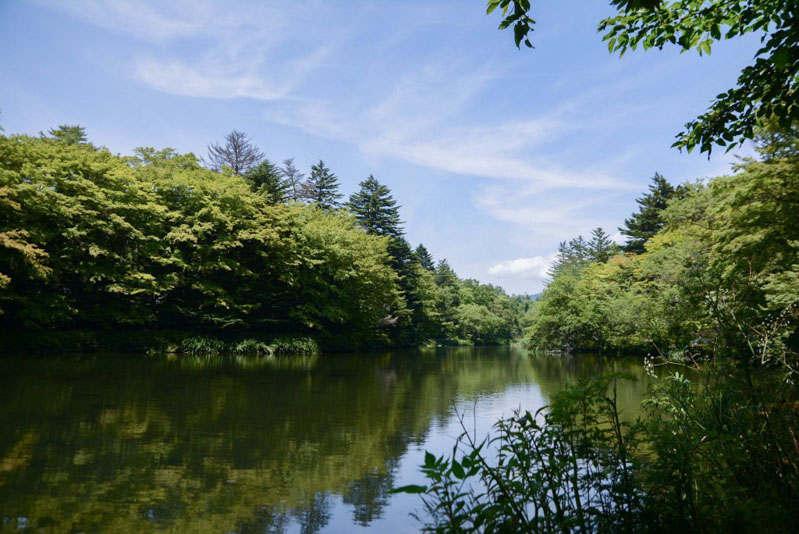 軽井沢 雲場池 観光
