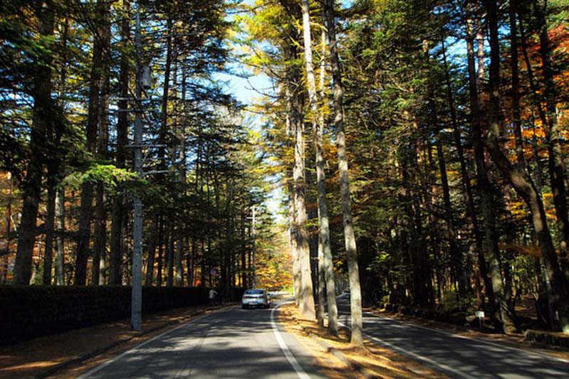 出典:http://www.at-roadside.com/drive/karuizawa/mikasa-usui.html