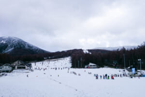 http://snow.gnavi.co.jp/guide/htm/r0111s.htm