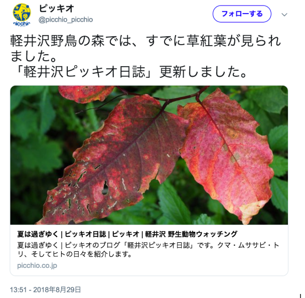 スクリーンショット 2018-10-20 17.58.54